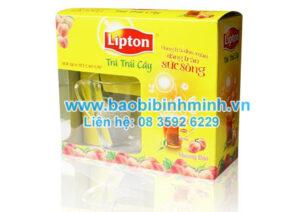 hộp giấy lipton