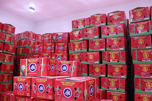 thùng carton đóng gói thanh long xuất khẩu
