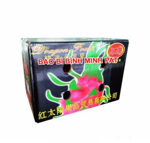 sản xuất thùng đựng trái cây Thanh Long xuất khẩu - hinh 2