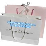 Mẫu túi giấy quai xách thời trang cho mùa giáng sinh