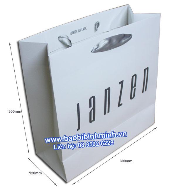 Thông số kỹ thuật Túi giấy JanZen