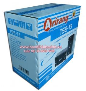 in thùng giấy carton đựng loa Arirang TSE-T5