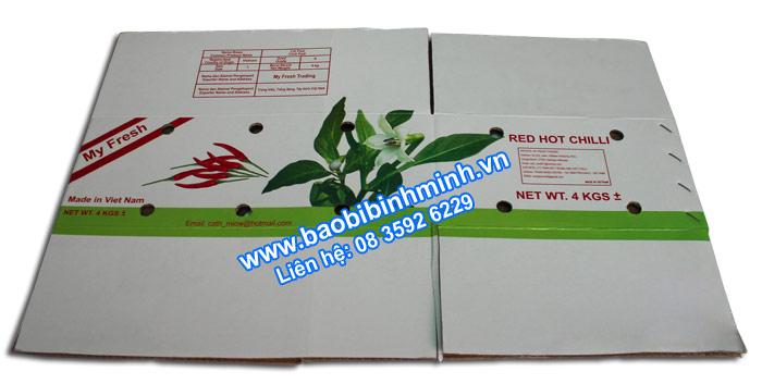 thùng carton chống thấm đựng ớt xuất khẩu 03