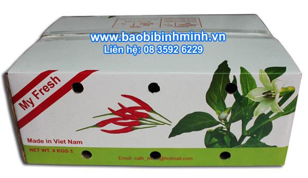 thùng carton chống thấm đựng ớt xuất khẩu 02