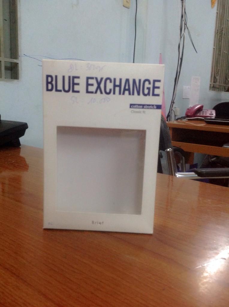 mẫu hộp giấy Blue Exchange in offset