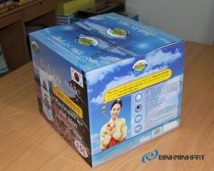 in thùng carton 3 lớp đựng bình lọc nước