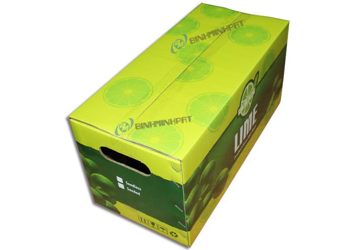Thùng carton in offset đựng chanh với thiết kế có tay cầm bên hông