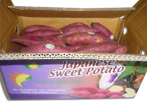 Sản xuất thùng khoai lang xuất khẩu