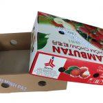 Hộp carton đựng chôm chôm xuất khẩu