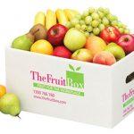 Sản xuất thùng carton đựng trái cây giá rẻ chất lượng cao xuất khẩu