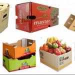 Nhà sản xuất thùng carton đựng nông sản trái cây xuất khẩu