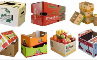 Sản xuất bao bì thùng carton cho trái cây tươi