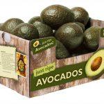 Thùng carton đựng trái cây, Thùng carton đựng rau củ quả xuất khẩu