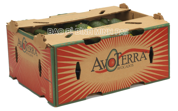 Thùng carton đựng bơ xuất khẩu - hinh 5