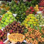 Mỹ, Nhật, Hàn, Trung Quốc tấp nập đặt mua rau củ quả Việt Nam