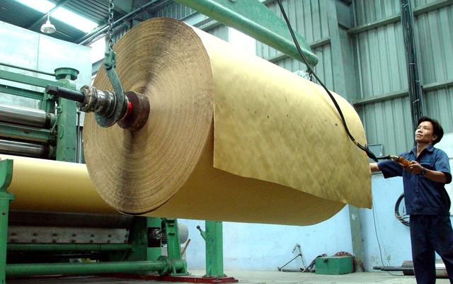 Giá giấy tăng vọt do khan hiếm nguồn bột giấy nhập từ Trung Quốc