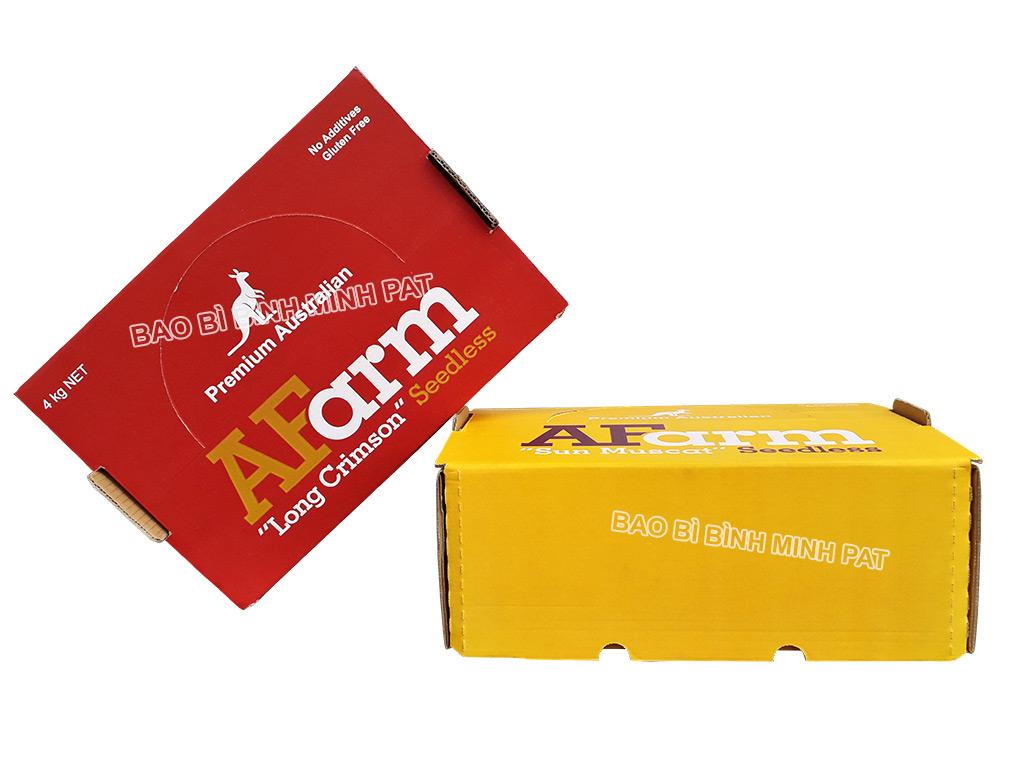 In hộp giấy carton đựng nho tươi xuất khẩu - hinh 7