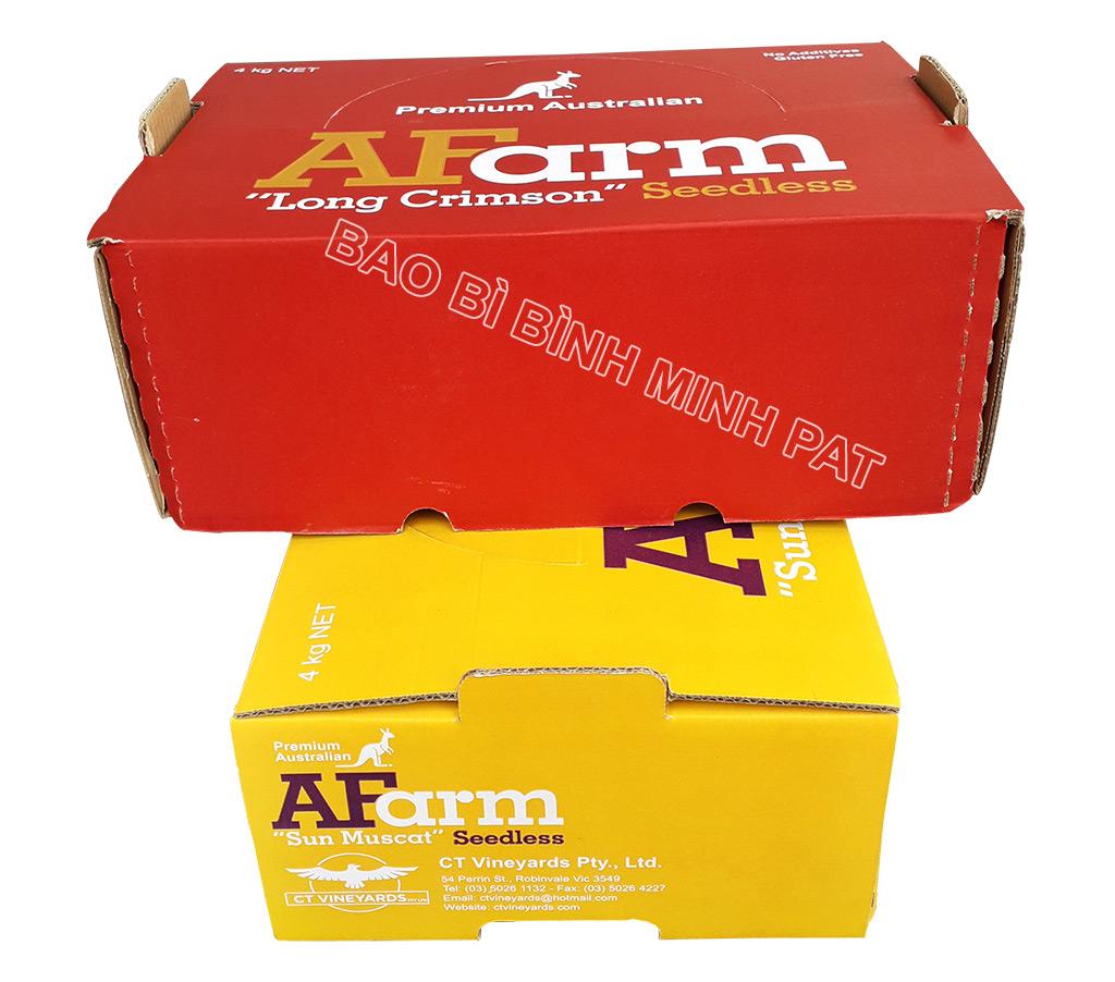In hộp giấy carton đựng nho tươi xuất khẩu - hinh 8