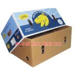 Mẫu thùng carton đựng trái cây xuất khẩu giá rẻ tại TPHCM